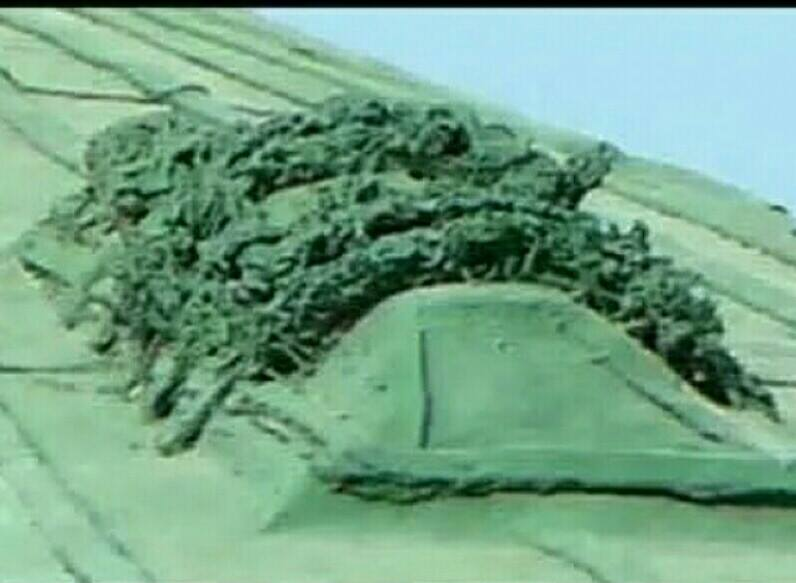 Benda Apa Diatas Kubah Hijau Masjid Nabawi Arsip Armansyah